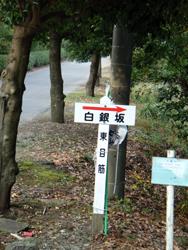 051110sakashuutenn02