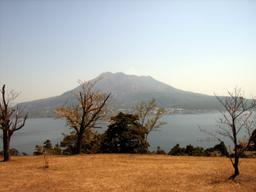 060331_issakurajima01