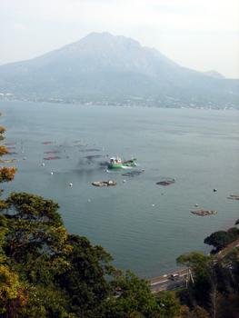Sakurajima_kinnkouwann